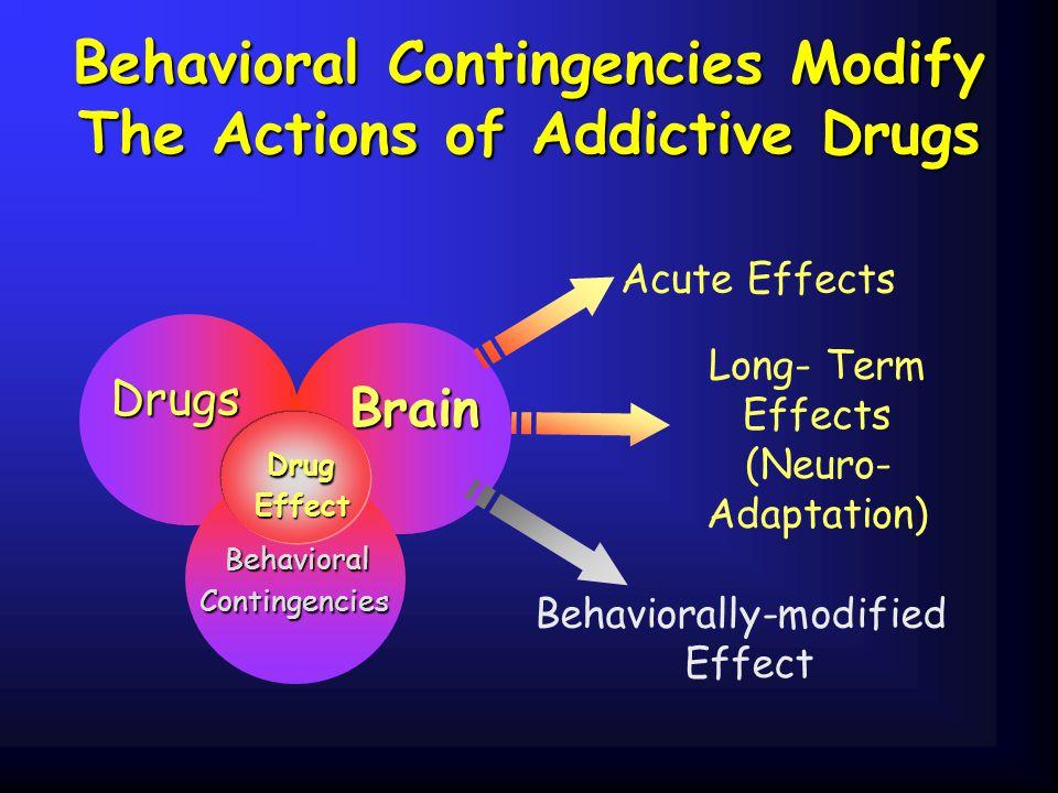 Behavioral Contingencies Modify The Actions of Addictive Drugs Drugs Brain Brain Behavioral Contingencies Contingencies Acute Effects Long- Term Effec