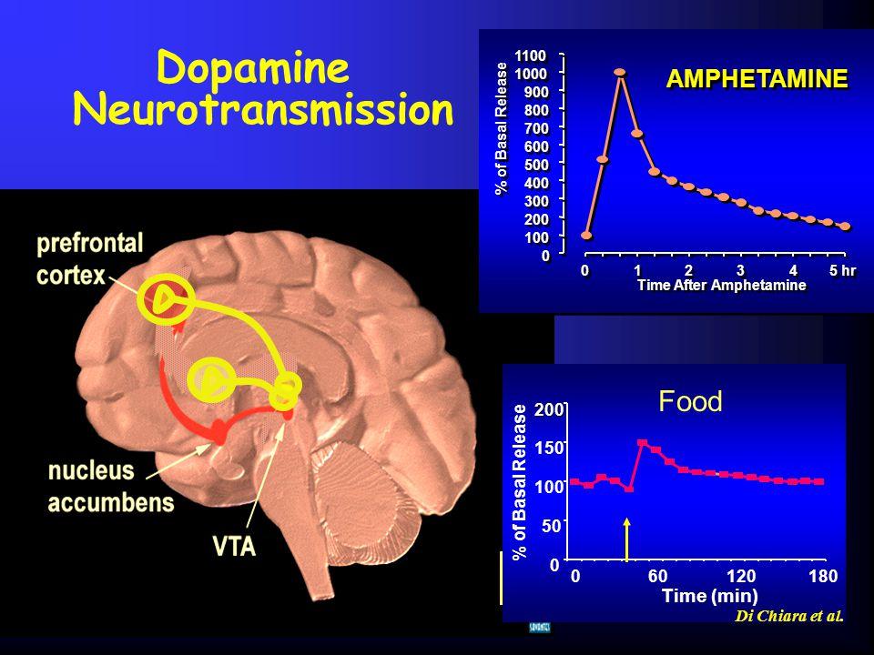 Dopamine Neurotransmission 0 0 100 200 300 400 500 600 700 800 900 1000 1100 0 0 1 1 2 2 3 3 4 4 5 hr Time After Amphetamine % of Basal Release AMPHET