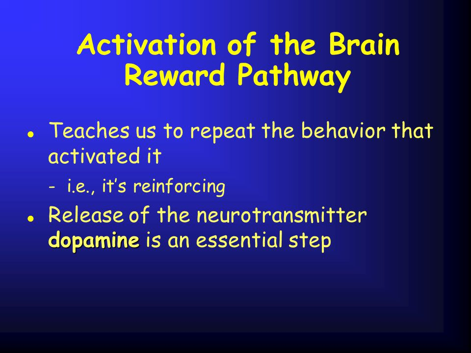Activation of the Brain Reward Pathway l Teaches us to repeat the behavior that activated it - i.e., it's reinforcing dopamine l Release of the neurotransmitter dopamine is an essential step