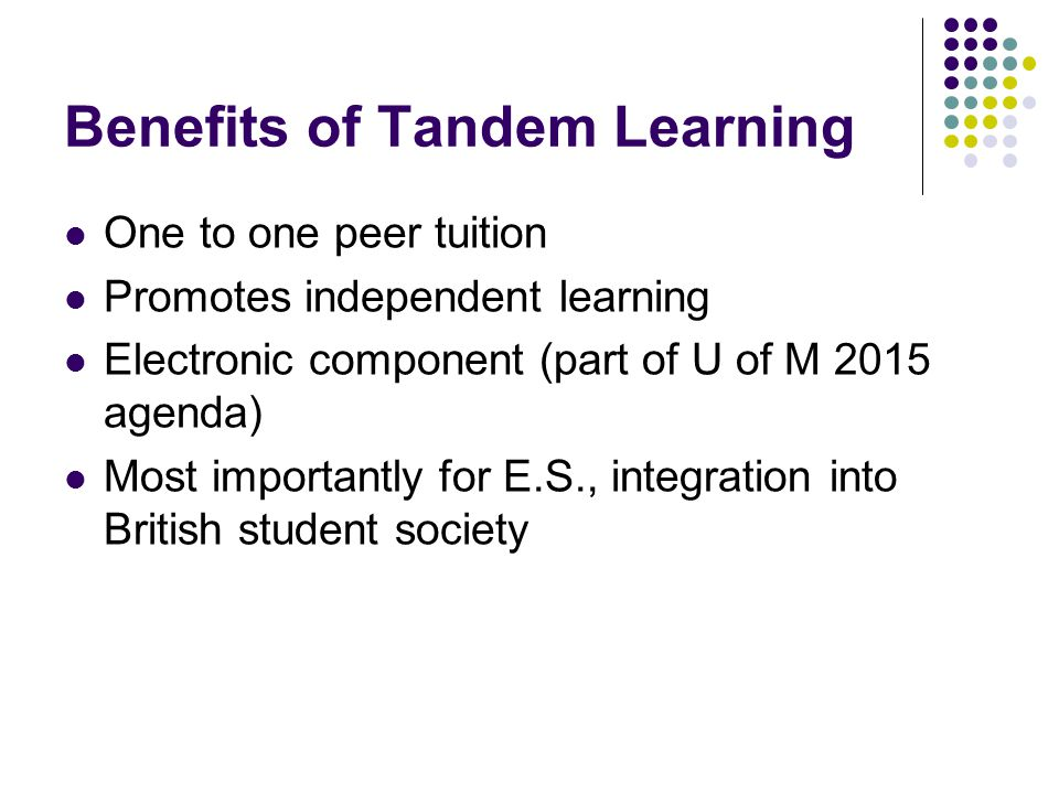 Other Forms of Tandem Learning L.