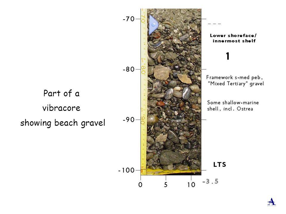 Part of a vibracore showing beach gravel