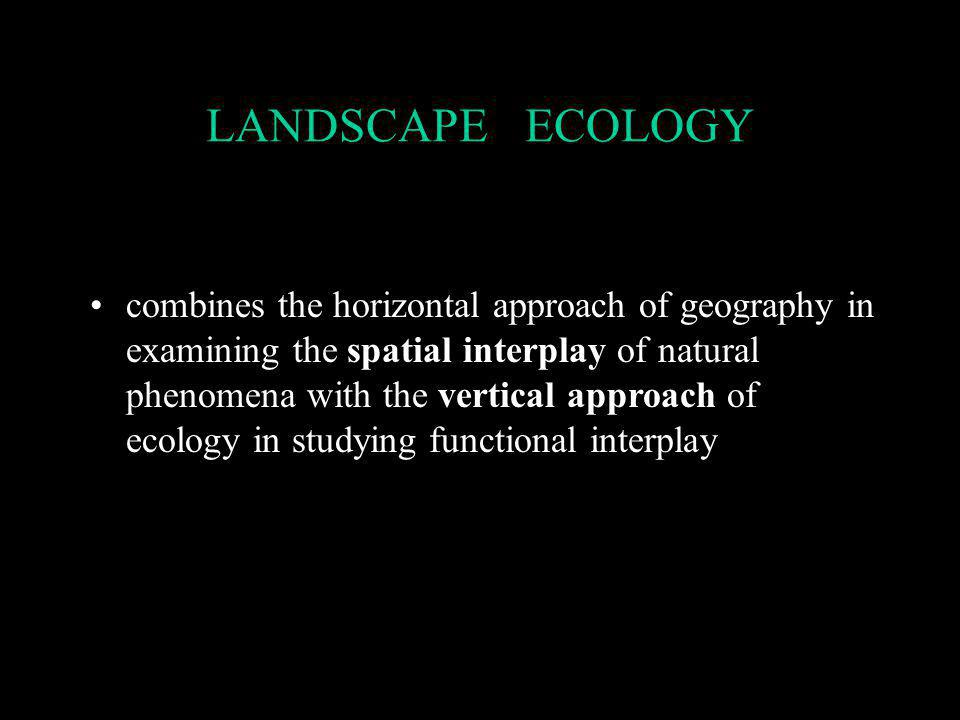 Short term Goals How many patches of 'suitable habitat' type coexist within the landscape Explain 'landscape level mechanisms' to facilitate understanding of complex environments The Temporal framework will consider three points in time: Years 1987 - 1994 - 2000