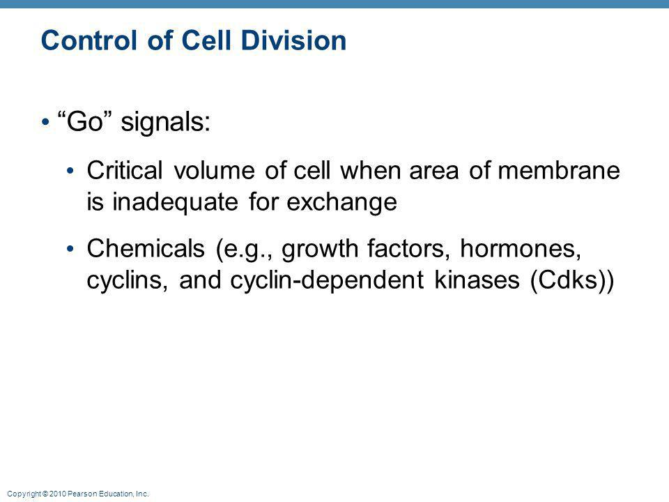 "Copyright © 2010 Pearson Education, Inc. Control of Cell Division ""Go"" signals: Critical volume of cell when area of membrane is inadequate for exchan"