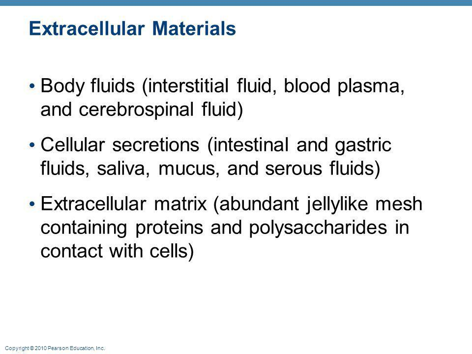 Copyright © 2010 Pearson Education, Inc. Extracellular Materials Body fluids (interstitial fluid, blood plasma, and cerebrospinal fluid) Cellular secr