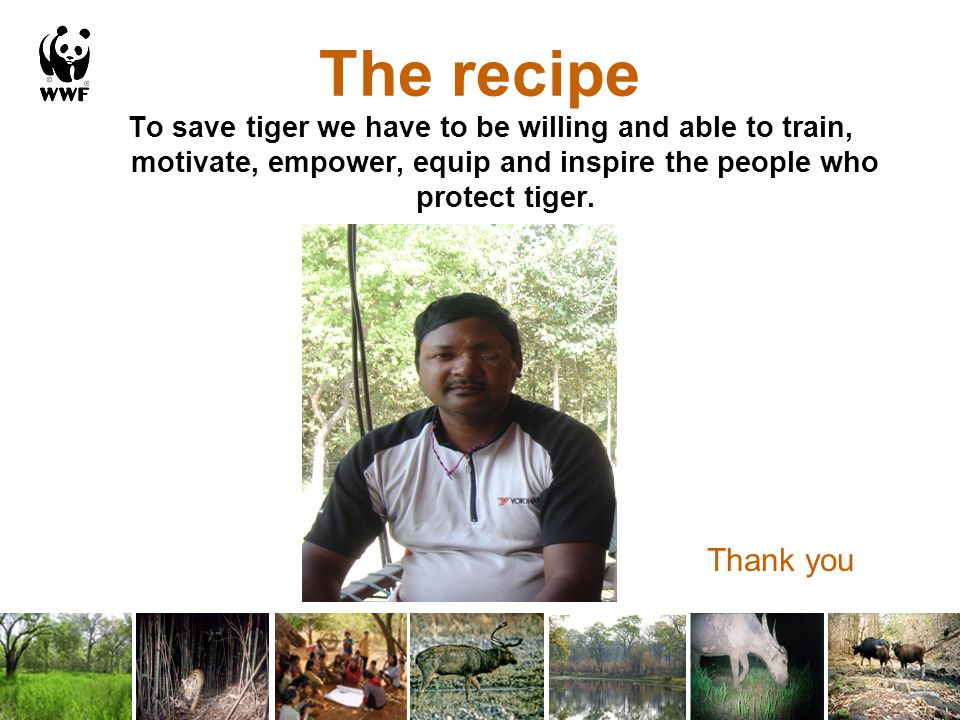 The recipe To save tiger we have to be willing and able to train, motivate, empower, equip and inspire the people who protect tiger.