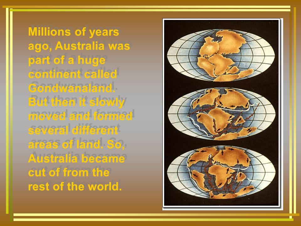 Millions of years ago, Australia was part of a huge continent called Gondwanaland.