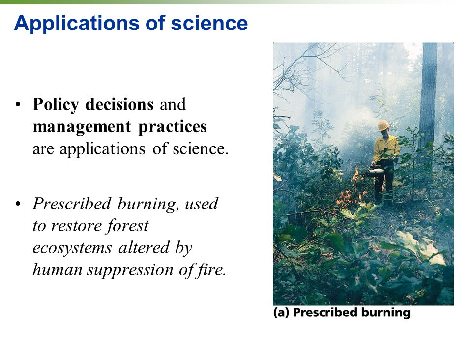 Applications of science Policy decisions and management practices are applications of science. Prescribed burning, used to restore forest ecosystems a