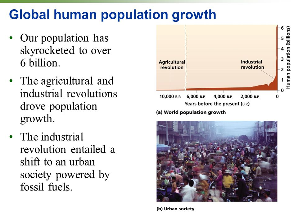 Global human population growth Our population has skyrocketed to over 6 billion. The agricultural and industrial revolutions drove population growth.