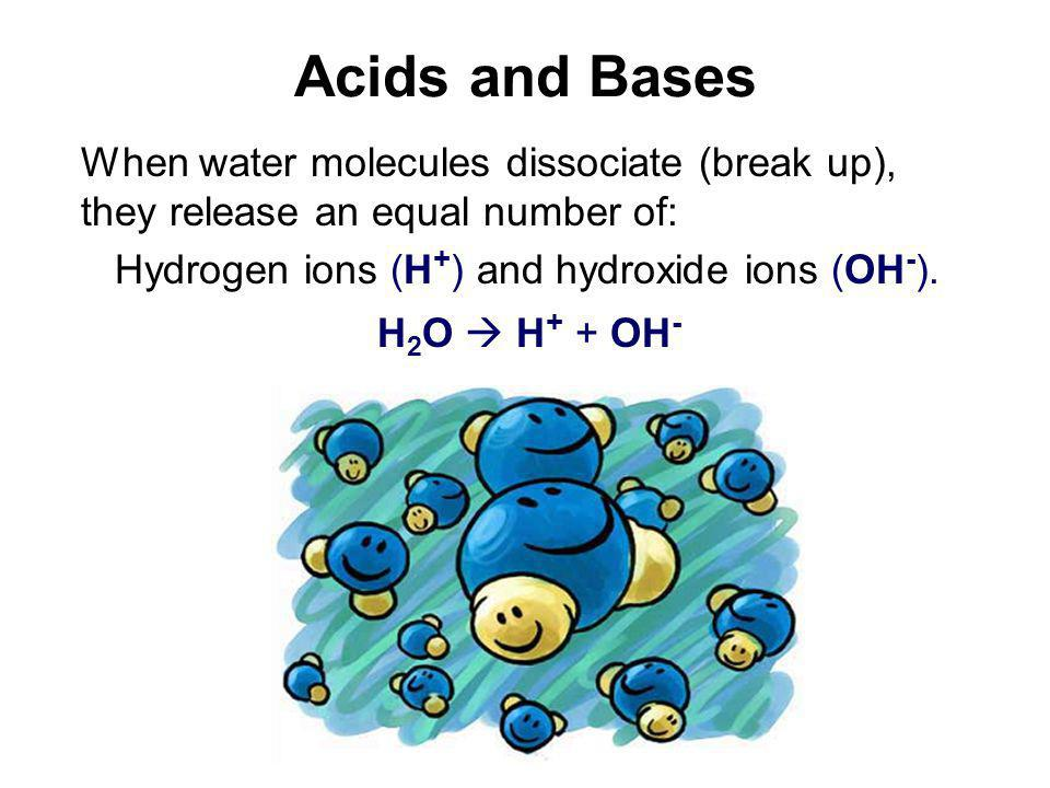 How Acids Differ from Bases Acidic Solutions (High H + Concentrations) When acid substances break up in water they release hydrogen ions (H + ).