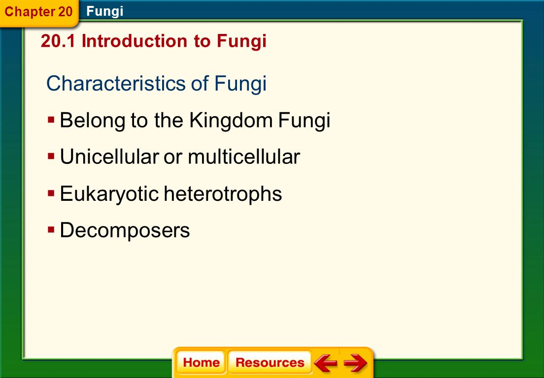 Click on a lesson name to select. Chapter 20 Fungi Section 1: Introduction to Fungi Section 2: Diversity of Fungi Section 3: Ecology of Fungi