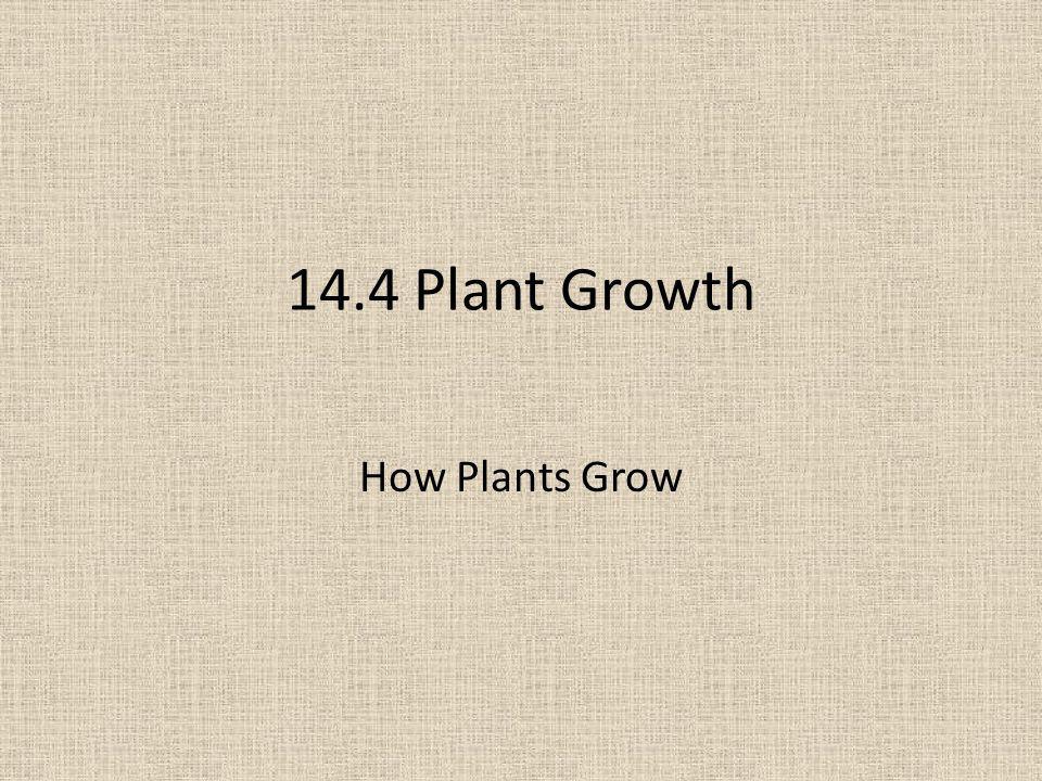14.4 Plant Growth How Plants Grow
