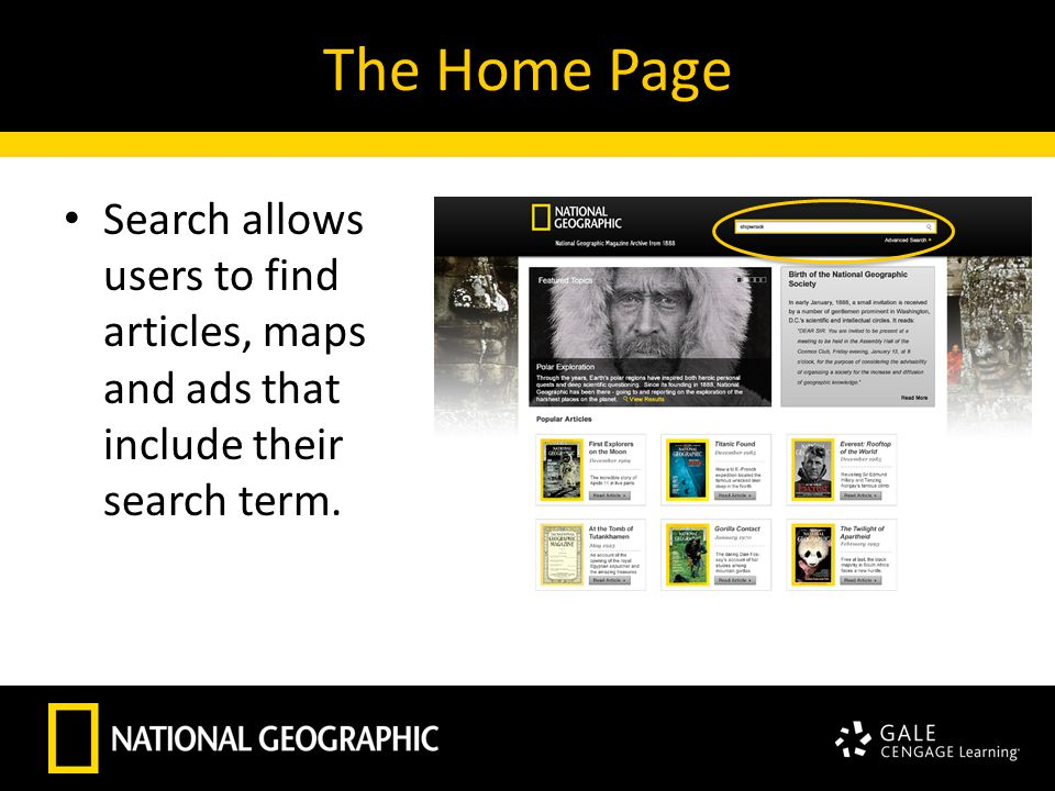 The Home Page Search allows users to find articles, maps and ads that include their search term.