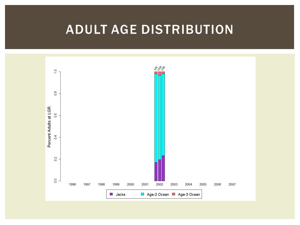ADULT AGE DISTRIBUTION
