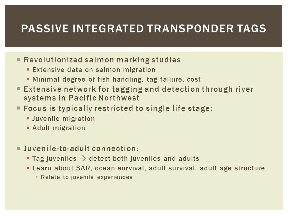  Revolutionized salmon marking studies  Extensive data on salmon migration  Minimal degree of fish handling, tag failure, cost  Extensive network