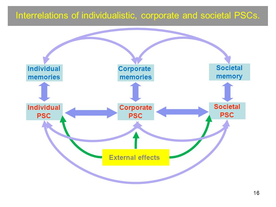 16 Interrelations of individualistic, corporate and societal PSCs.