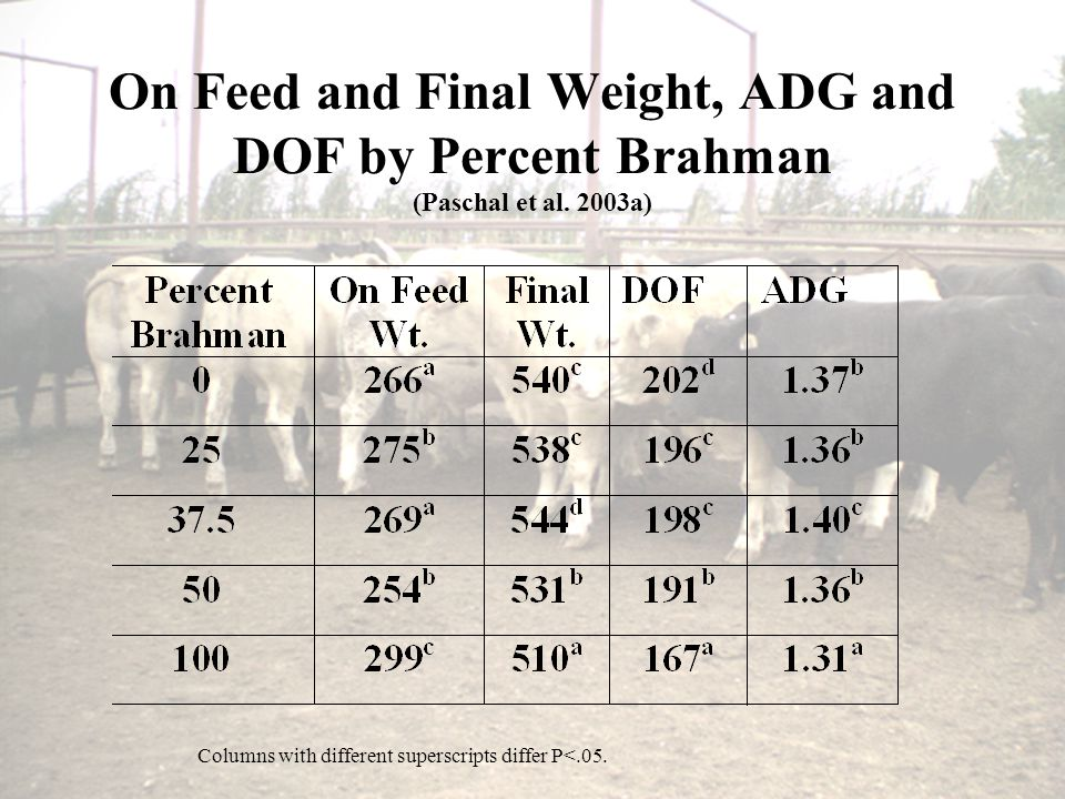 On Feed and Final Weight, ADG and DOF by Percent Brahman (Paschal et al.