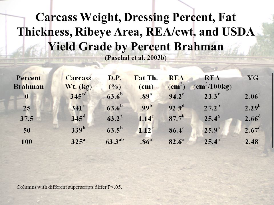 Carcass Weight, Dressing Percent, Fat Thickness, Ribeye Area, REA/cwt, and USDA Yield Grade by Percent Brahman (Paschal et al.