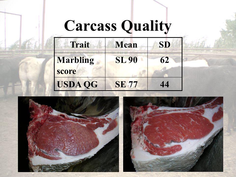 Carcass Quality TraitMeanSD Marbling score SL 9062 USDA QGSE 7744