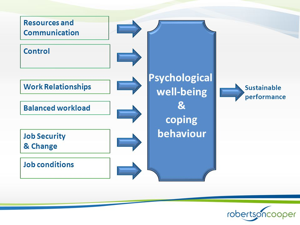 Resources and Communication Control Work Relationships Balanced workload Job Security & Change Job conditions Psychological well-being & coping behaviour Sustainable performance