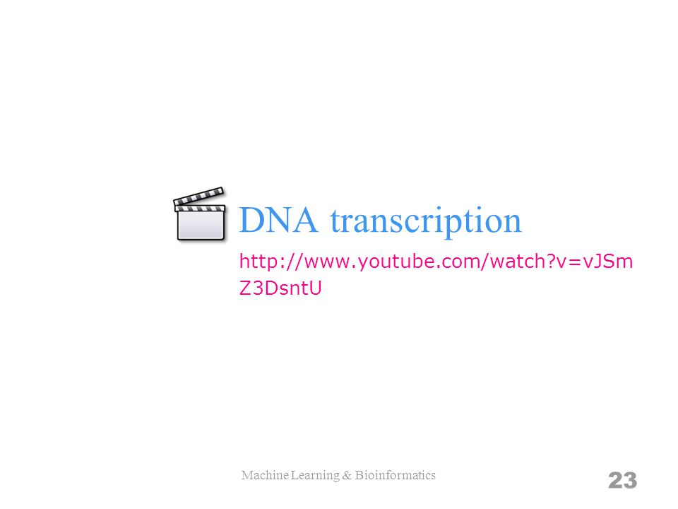 DNA transcription Machine Learning & Bioinformatics 23 http://www.youtube.com/watch?v=vJSm Z3DsntU
