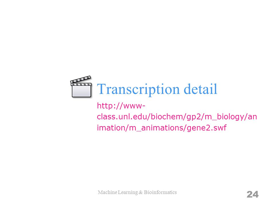 Transcription detail Machine Learning & Bioinformatics 24 http://www- class.unl.edu/biochem/gp2/m_biology/an imation/m_animations/gene2.swf