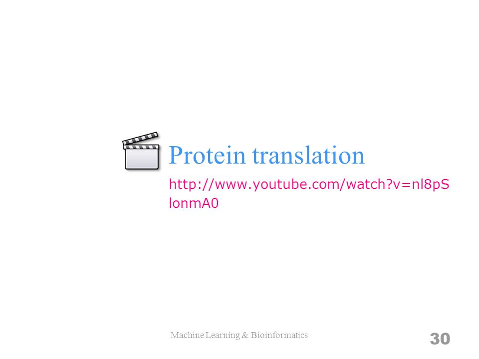 Protein translation Machine Learning & Bioinformatics 30 http://www.youtube.com/watch?v=nl8pS lonmA0