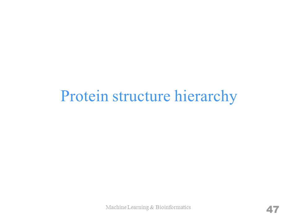Protein structure hierarchy Machine Learning & Bioinformatics 47