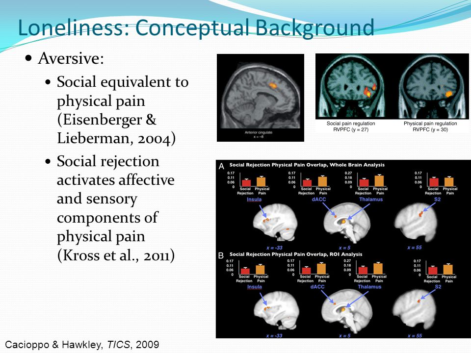 Loneliness: Conceptual Background Aversive: Social equivalent to physical pain (Eisenberger & Lieberman, 2004) Social rejection activates affective and sensory components of physical pain (Kross et al., 2011) Cacioppo & Hawkley, TICS, 2009