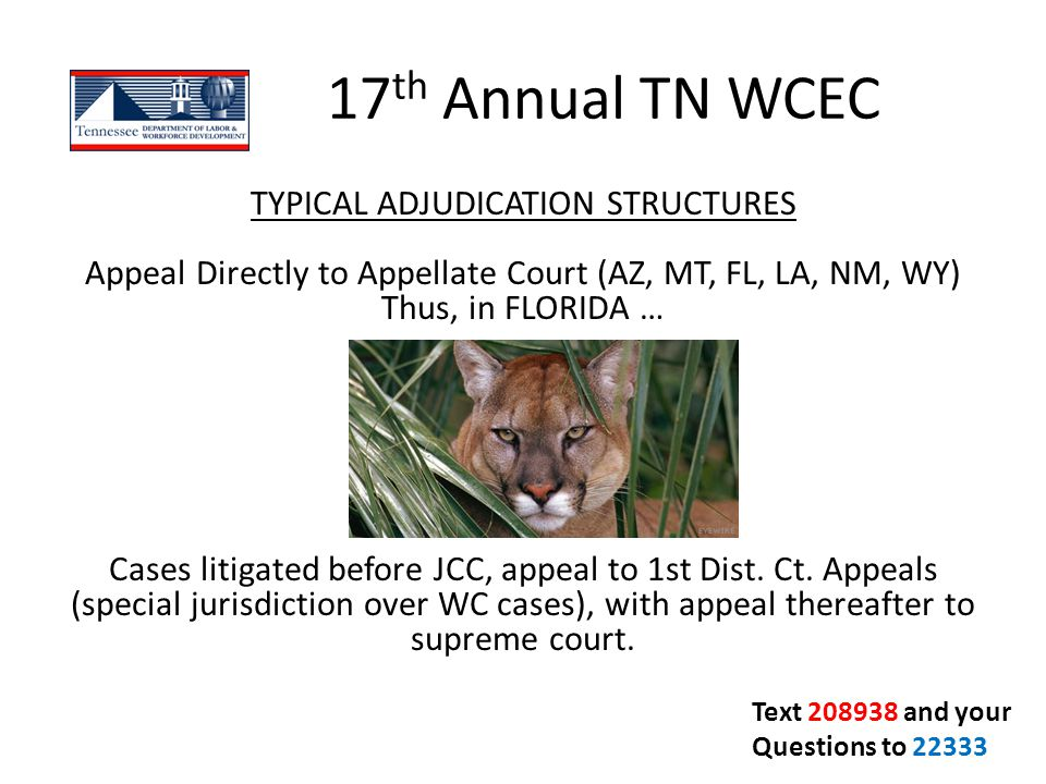 17 th Annual TN WCEC TYPICAL ADJUDICATION STRUCTURES Appeal Directly to Appellate Court (AZ, MT, FL, LA, NM, WY) Thus, in FLORIDA … Cases litigated be