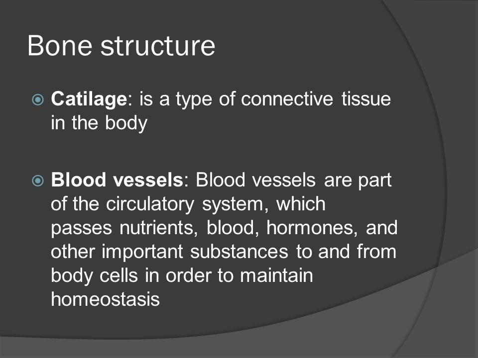 Bone structure  Catilage: is a type of connective tissue in the body  Blood vessels: Blood vessels are part of the circulatory system, which passes nutrients, blood, hormones, and other important substances to and from body cells in order to maintain homeostasis