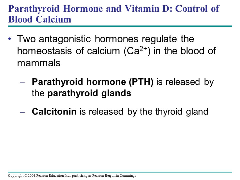 Copyright © 2008 Pearson Education Inc., publishing as Pearson Benjamin Cummings Parathyroid Hormone and Vitamin D: Control of Blood Calcium Two antagonistic hormones regulate the homeostasis of calcium (Ca 2+ ) in the blood of mammals – Parathyroid hormone (PTH) is released by the parathyroid glands – Calcitonin is released by the thyroid gland