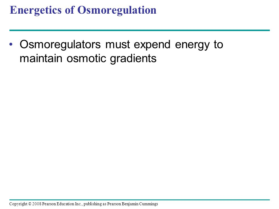 Copyright © 2008 Pearson Education Inc., publishing as Pearson Benjamin Cummings Energetics of Osmoregulation Osmoregulators must expend energy to maintain osmotic gradients