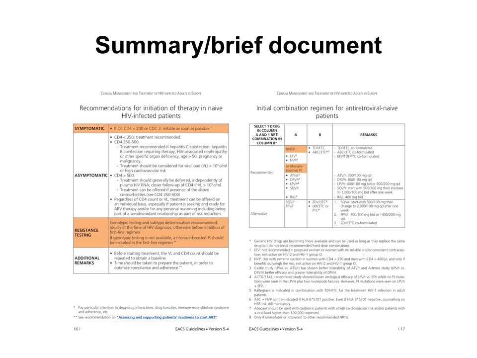 Summary/brief document