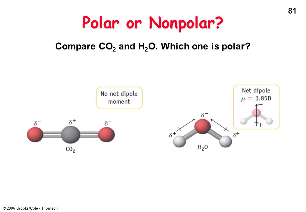 81 © 2006 Brooks/Cole - Thomson Polar or Nonpolar? Compare CO 2 and H 2 O. Which one is polar?