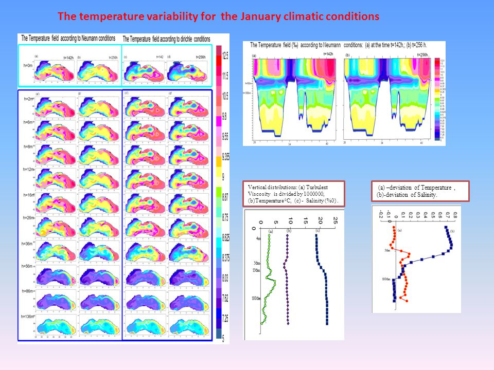 Vertical distributions: (a) Turbulent Viscosity is divided by 1000000, (b)Temperature 0 C, (c) - Salinity (%0). Vertical distributions: (a) Turbulent