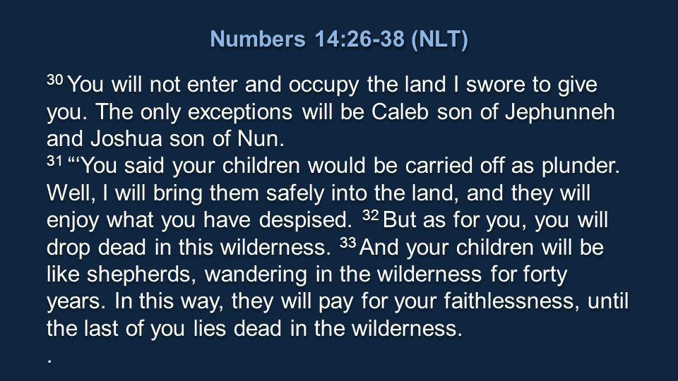 30 You will not enter and occupy the land I swore to give you.