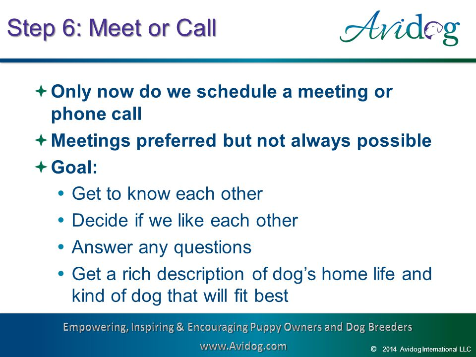 2014AvidogInternationalLLC 2014 Avidog International LLC © Step 6: Meet or Call  Only now do we schedule a meeting or phone call  Meetings preferred but not always possible  Goal:  Get to know each other  Decide if we like each other  Answer any questions  Get a rich description of dog's home life and kind of dog that will fit best