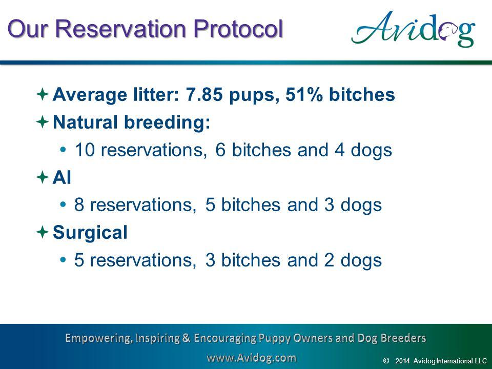 2014AvidogInternationalLLC 2014 Avidog International LLC © Our Reservation Protocol  Average litter: 7.85 pups, 51% bitches  Natural breeding:  10 reservations, 6 bitches and 4 dogs  AI  8 reservations, 5 bitches and 3 dogs  Surgical  5 reservations, 3 bitches and 2 dogs