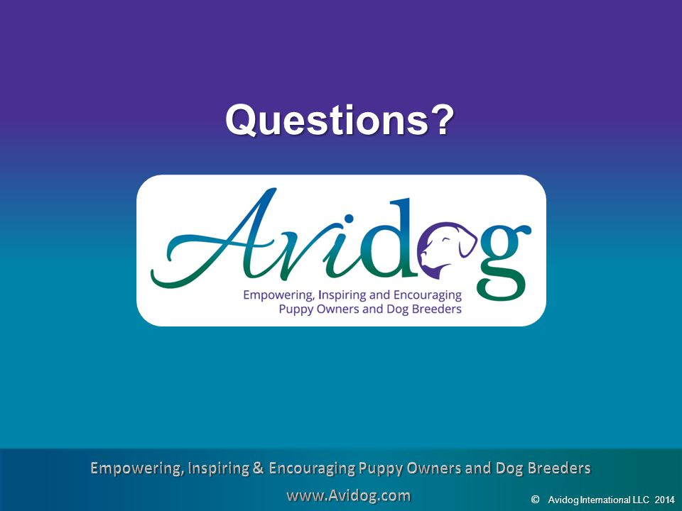 AvidogInternationalLLC2014 Avidog International LLC 2014 © Questions?