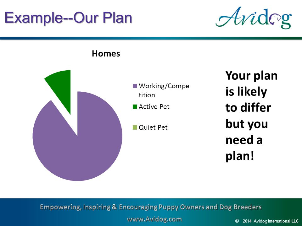 2014AvidogInternationalLLC 2014 Avidog International LLC © Example--Our Plan Your plan is likely to differ but you need a plan!