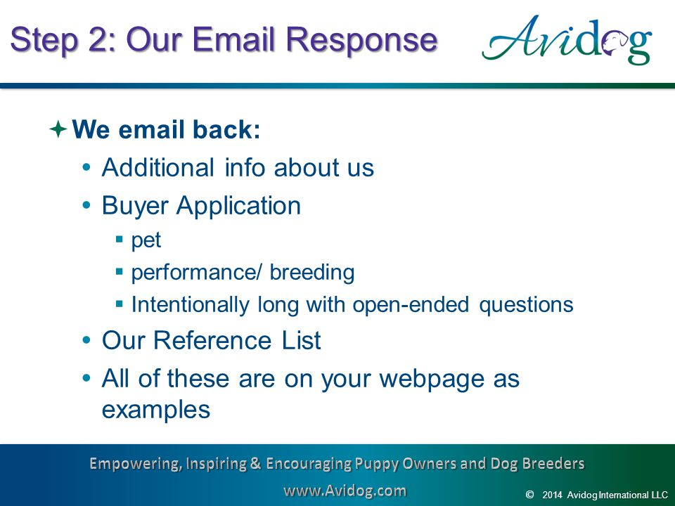 2014AvidogInternationalLLC 2014 Avidog International LLC © Step 2: Our Email Response  We email back:  Additional info about us  Buyer Application