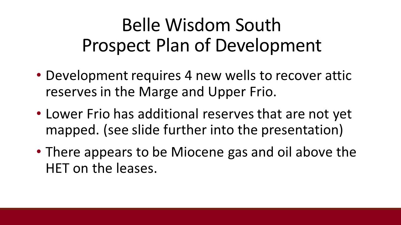 Belle Wisdom South Prospect Plan of Development Development requires 4 new wells to recover attic reserves in the Marge and Upper Frio.