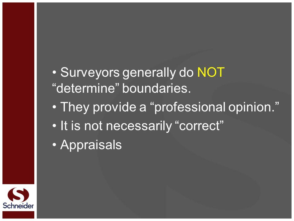 Surveyors generally do NOT determine boundaries.