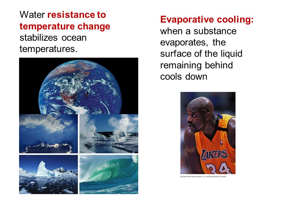 Water resistance to temperature change stabilizes ocean temperatures. Evaporative cooling: when a substance evaporates, the surface of the liquid rema