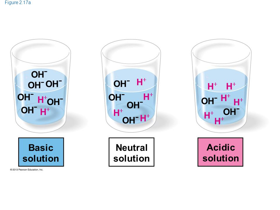 Figure 2.17a OH − HH HH Basic solution OH − HH HH HH HH HH HH HH HH HH HH Neutral solution Acidic solution