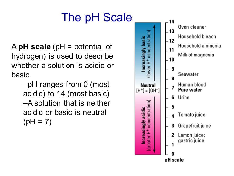 The pH Scale A pH scale (pH = potential of hydrogen) is used to describe whether a solution is acidic or basic. –pH ranges from 0 (most acidic) to 14
