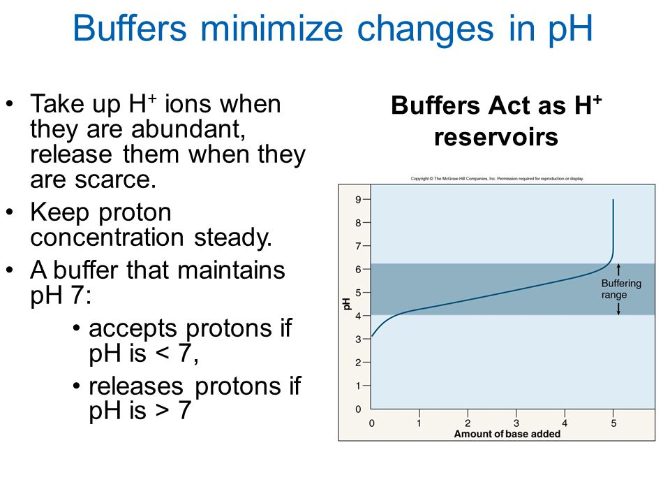 Buffers minimize changes in pH Buffers Act as H + reservoirs Take up H + ions when they are abundant, release them when they are scarce. Keep proton c
