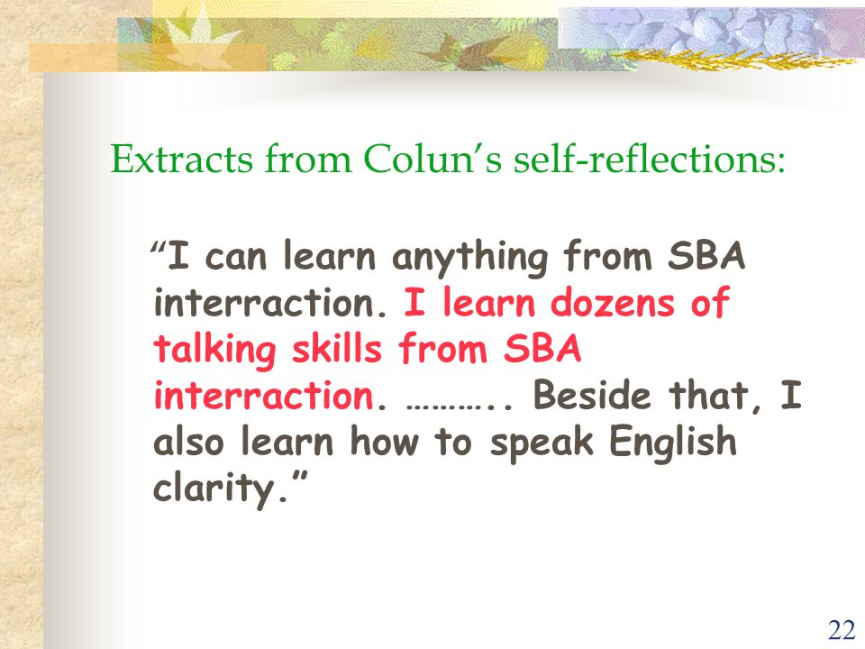 22 Extracts from Colun's self-reflections: I can learn anything from SBA interraction.