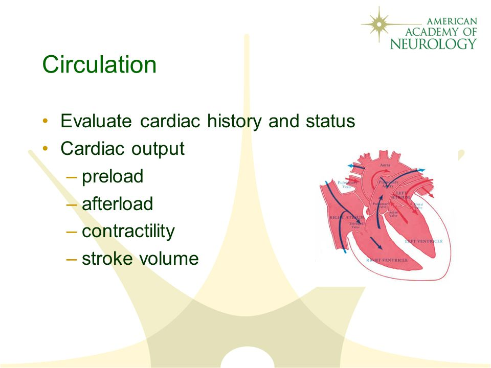 Circulation Evaluate cardiac history and status Cardiac output –preload –afterload –contractility –stroke volume