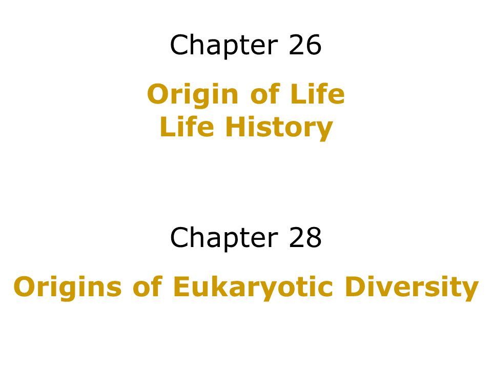 Chapter 26 Origin of Life Life History Chapter 28 Origins of Eukaryotic Diversity